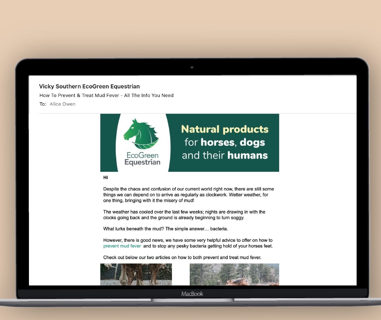 digital marketing and consultancy equestrian