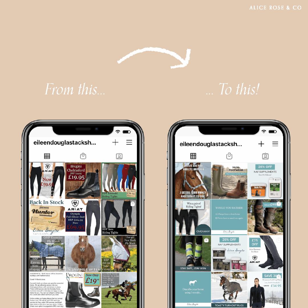 equestrian instagram feed refresh