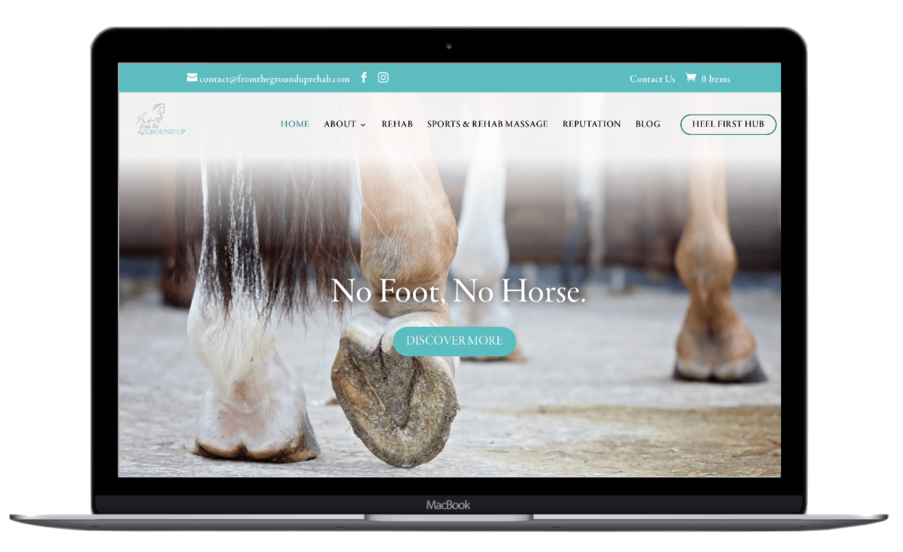 equestrian website design from the ground up